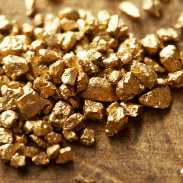Westhaven Strikes 24.5 g/t Gold Over 17.77 Meters At Shovelnose