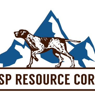 GSP Resource Corp. Provides Update on Alwin Mine Copper-Silver-Gold Project Permitting and Geological Interpretation